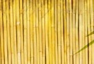 Adamsvale Bamboo fencing 4