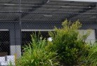 Adamsvale Wire fencing 20